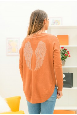 Pull aile d'ange