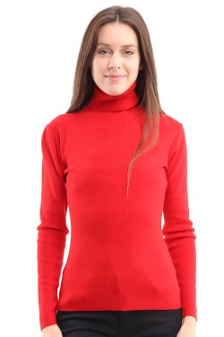Jumper basic col roulé